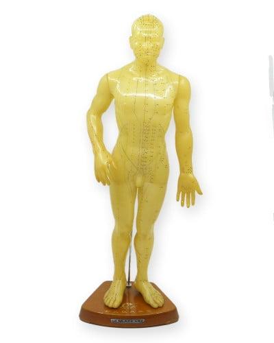 mannequin-acupuncture_0212